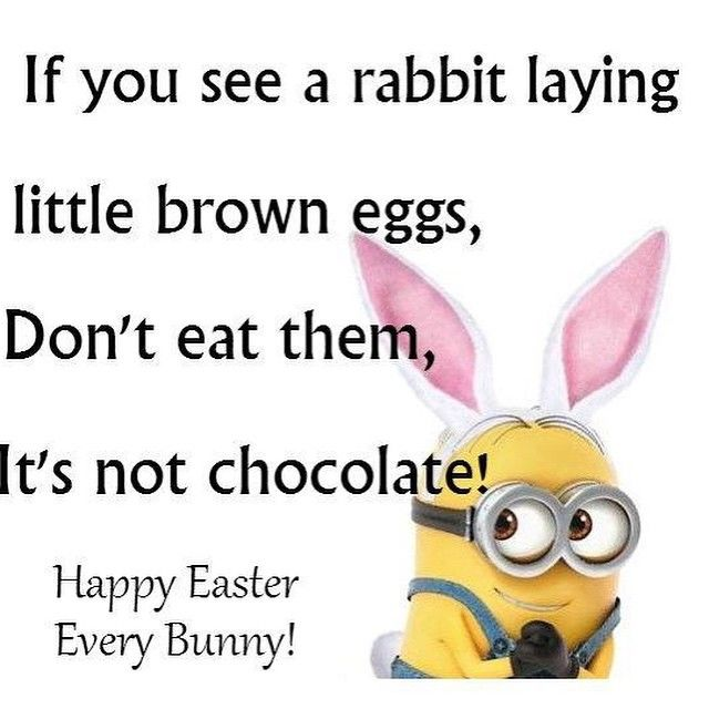 Happy Easter Quotes Funny