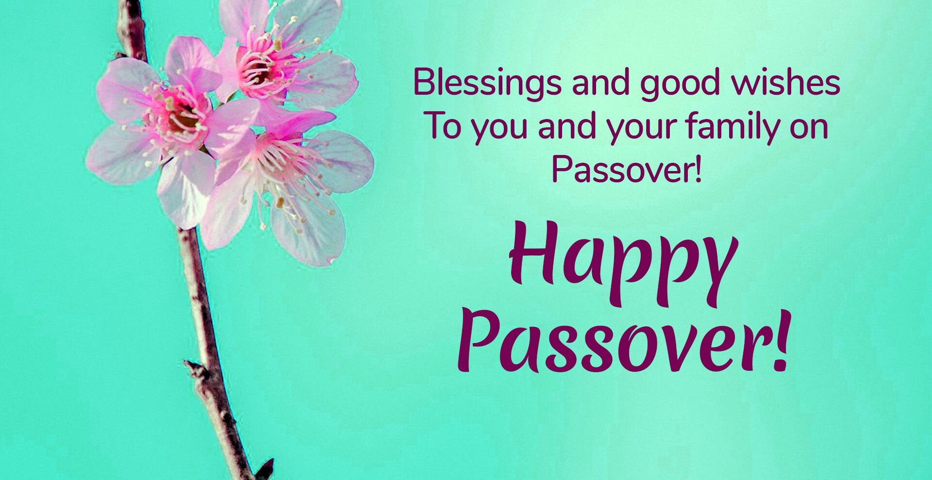 Happy Passover Wishes Greetings