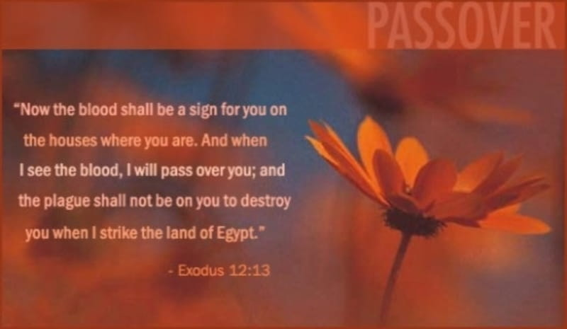 Passover Bible Verses Quotes