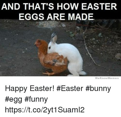 Easter Egg Funny Memes