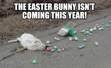 Easter Funny Bunny Memes