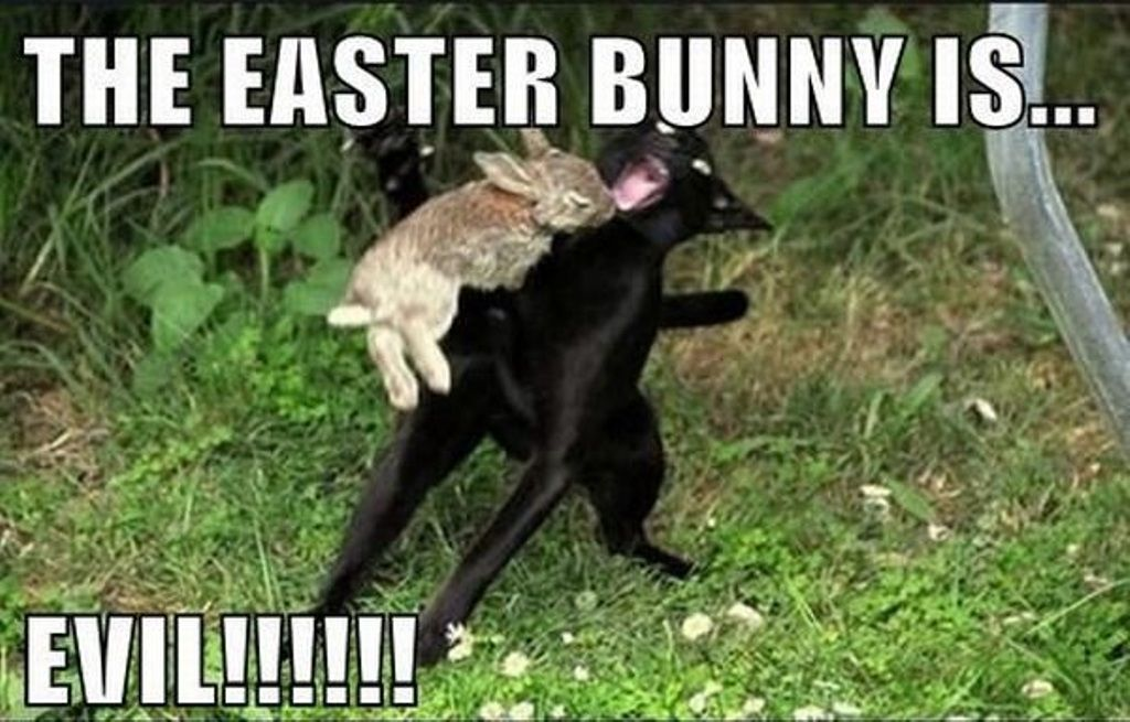 Funny Easter Bunny Memes 2020